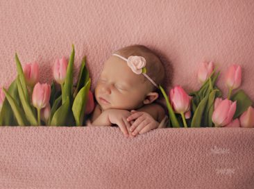 waukesha newborn photographer
